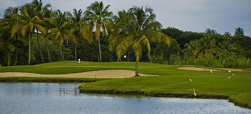 Rio Mar Country Club River Course Puerto Rico Golf